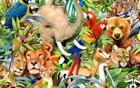 All Animal Wallpaper - jungle animals one wallpapers jungle animals one stock