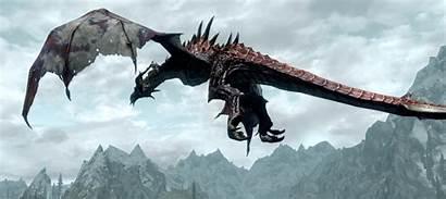 Odahviing Eater Elder Dragon Scrolls Eyrie Frost