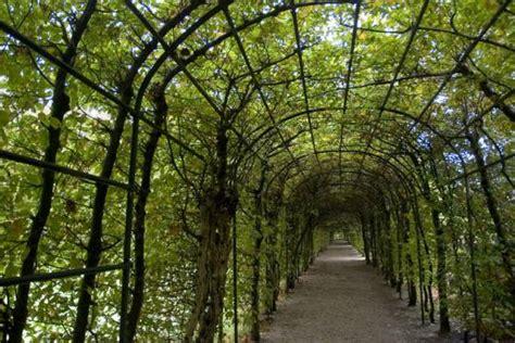 garden arche design ideas  inspired