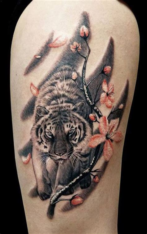 Best Gallery 25 Best Ideas About Tiger On Tiger