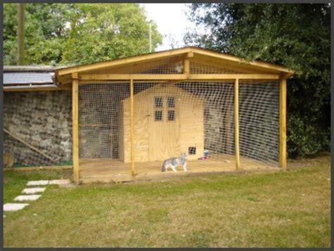 cage pour chat exterieur chatterie ext 233 rieure chatterie des vernelles