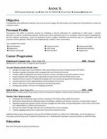 career summary exles for sales click here to download this sales professional resume template httpwww sales professional