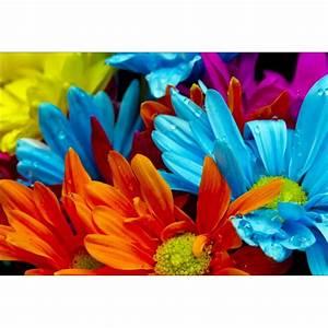 Papier Peint Geant : papier peint g ant d co fleurs multicolores 250x360cm ~ Premium-room.com Idées de Décoration