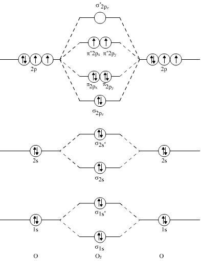 Paramagnetic Molecular Orbital Diagram by I M Pretty Sure The Diagram For O2 And F2 Is Wrong
