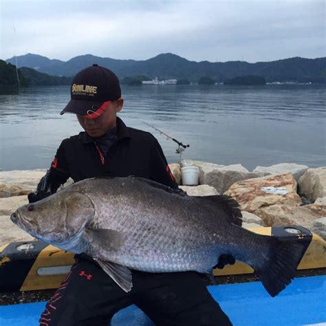 日本 三 大 怪 魚