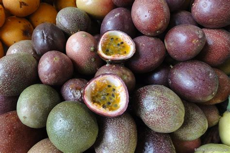 Marakuja passiflora - Smakowity blog