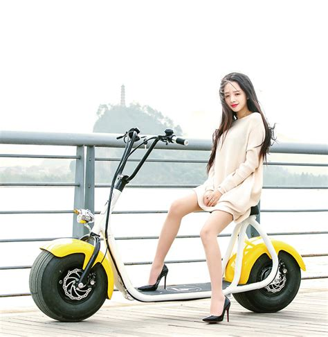 electronic charging coco e roller e bike 1000 w big city jumper mit eabs hyd