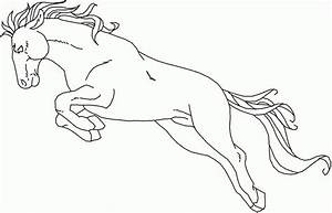 Jumping Horse Outline Drawing