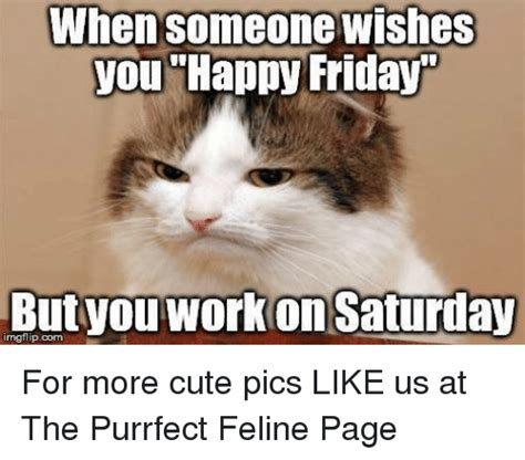 Working On Saturday Meme - when someone wishes you happy friday nngflipcom work saturday for more cute pics like us at the
