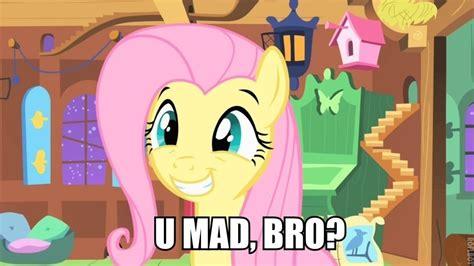 Funny Mlp Memes - funny mlp my little pony friendship is magic photo 33086824 fanpop