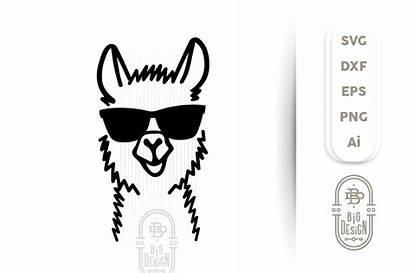 Llama Svg Lama Head Cut Sunglasses Illustration