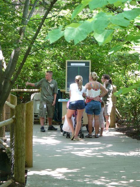 tribe photos the cincinnati zoo botanical garden