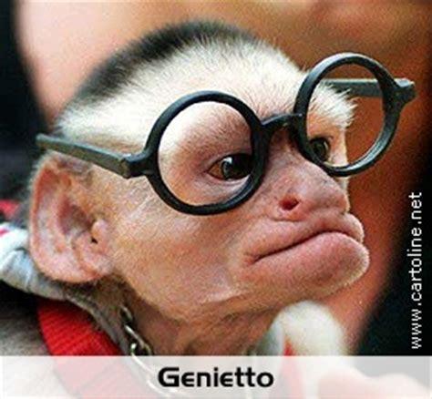 Scimmia Sedere Rosso by Scimmia Genietto