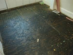linoleum flooring with asbestos linoleum asbestos related keywords linoleum asbestos long tail keywords keywordsking