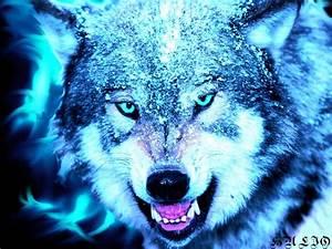 Fantasy, Original, Art, Artistic, Artwork, Wolf, Wolves, Wallpapers, Hd, Desktop, And, Mobile