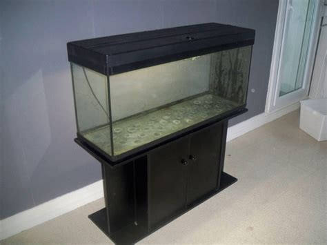 aquarium a vendre pas cher vente aquarium 250l annonce gratuite poissons et aquariums 76000 rouen