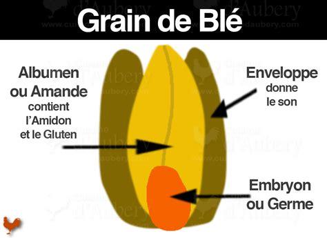 transformation cuisine les types de farine quelle farine pour quel usage