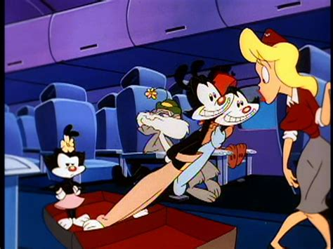 All rights go to warner bros for this and all of my other animaniacs. Image - HelloN-stewardess.png | Animaniacs Wiki | FANDOM powered by Wikia