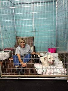 Volunteer spends 48 hours in kennel with dog that needs a home for Dog kennels louisville ky