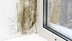 Schwarzer Schimmel Wie Entfernen Mauerwerk : schimmel entfernen helfen produkte wann muss der ~ Michelbontemps.com Haus und Dekorationen