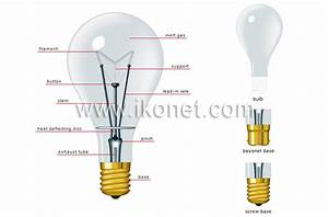 House  U0026gt  Electricity  U0026gt  Lighting  U0026gt  Incandescent Lamp Image