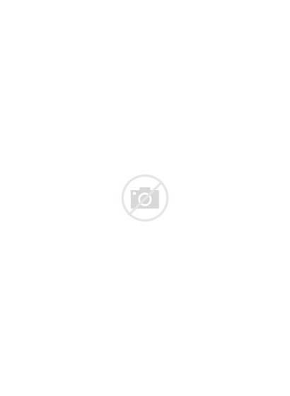 Colorado Paso El Peyton County Svg Rock