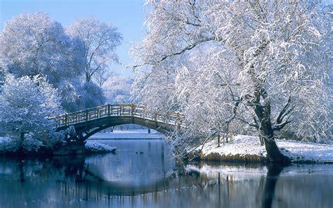 Winter Wonderland Photos  Hd Wallpapers Pulse