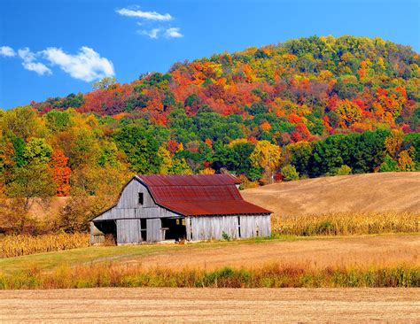 Rural Country Backgrounds