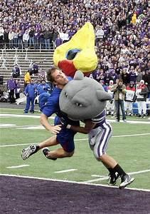 Kansas State Wildcat Mascot Knocked a Fake Kansas Jayhawk ...