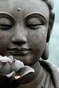 Buddha Sprüche Bilder : ausgeglichenheit ruhe buddha buddha buddhismus und buddha bilder ~ Orissabook.com Haus und Dekorationen