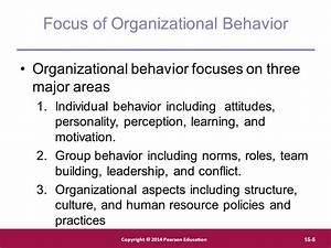 Organizational behavior practices informal essay definition