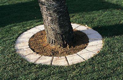 castorama luminaire cuisine pavé tour d 39 arbre cloître sienne castorama