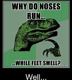 Image result for Funny thoughts to Ponder