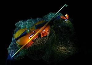 Violin On Blue Net Wallpaper Wallpaper | WallpaperLepi