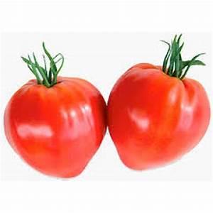 Seminte profesionale tomate ( rosii ) - ferma Gradina