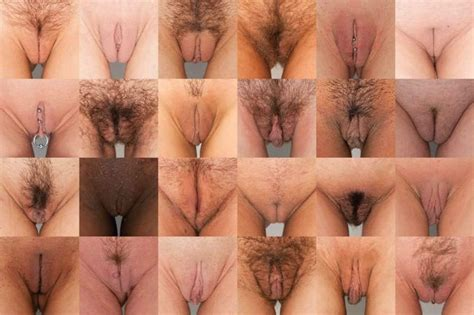 Types of pussy pics