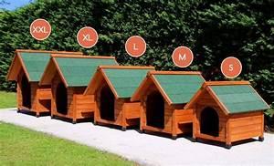 Niche Grand Chien Xxl : niche d 39 ext rieur cl o pour chats et chiens niche ~ Dailycaller-alerts.com Idées de Décoration
