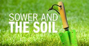 Sower, And, The, Soil