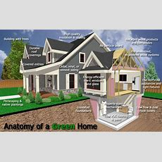 9 Common Misconceptions About Green Homes • Kay Pratt Remax