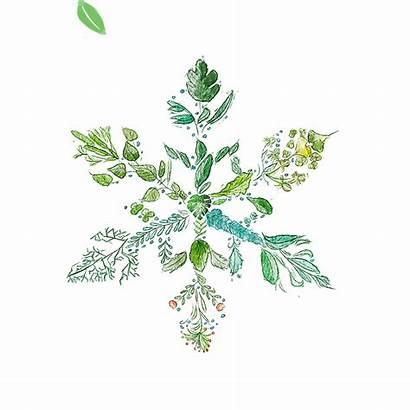 Ecard Snowflake