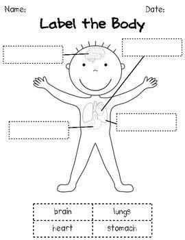 how our bodies work k 1 human science unit all 668   9db92ff556dbc92b35920ceab434a630