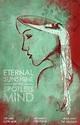Eternal sunshine of the spotless mind (2004) # ...