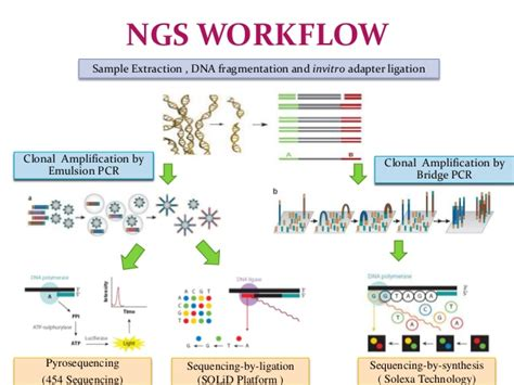 Next Sequencing Illumina Next Generation Sequencing