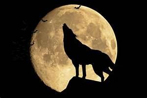 Mond Berechnen : mond 12 unglaubliche fakten ~ Themetempest.com Abrechnung