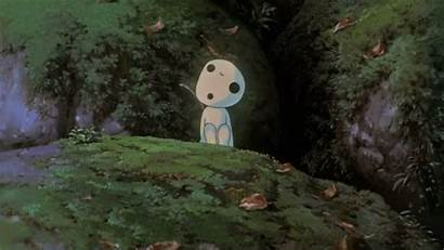 Mononoke Princess Kodama Ghibli Background Forest Wallpapers