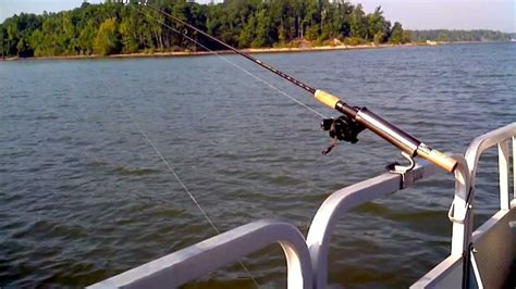 Best Rod Holders For Pontoon Boats by Best Pontoon Boat Fishing Rod Holders A Listly List
