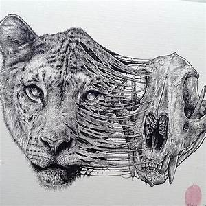 Animals Evolve Out Of Their Skeletons In Dark Drawings By ...
