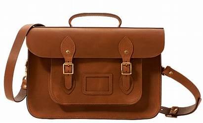 Satchel Bag Handbag Bags Trend Consumer Analysis
