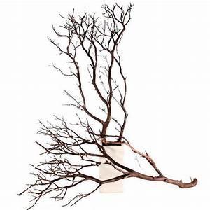 """12 Natural Manzanita Branches, 24"""""""