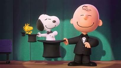 Peanuts Charlie Brown Snoopy Schulz Charles Legacy